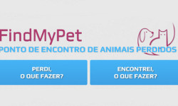 find my pet 2