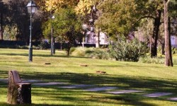 Em Telheiras há... 5 jardins para aproveitar o Verão de São Martinho! capa