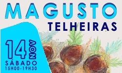 Magusto 2015 banner