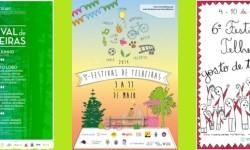 Cartazes Festival 2013-2015